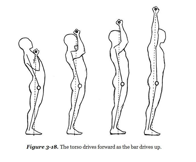 die ausfuhrung beim langhantel schulterdrucken von - Schulterdrücken mit der Langhantel und Kurzhantel - richtige Übungsausführung & Technik