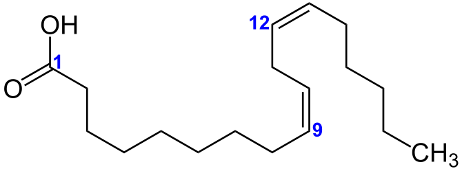 Linolsäure Strukturformel