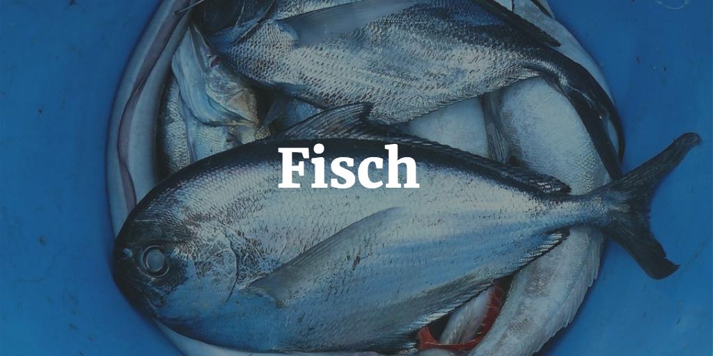 eiweisshaltige fischsorten 1024x512 - Die besten Eiweißhaltige Lebensmittel als sofort sortierbare Liste (auch vegan, vegetarisch, low fat und ohne Kohlenhydrate)
